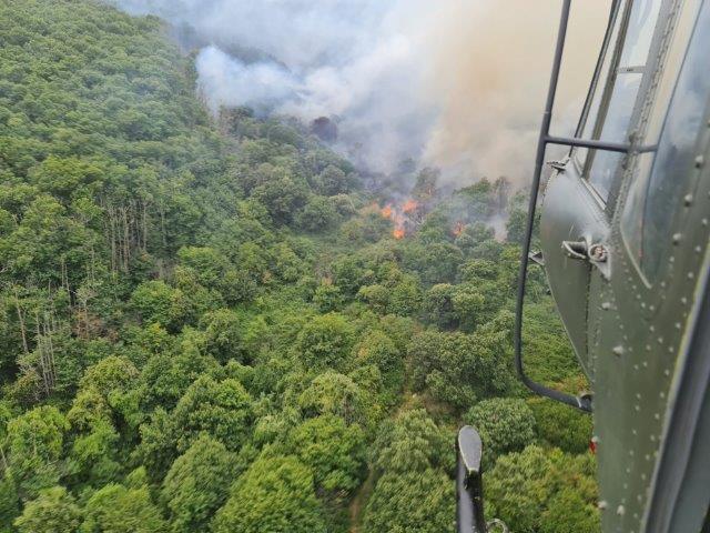 Foto 2. Un HH-412 del 2 Sirio in avvicinamento sul fuoco in Calabria (002)